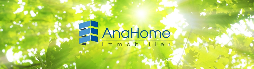 header_logo_anahome
